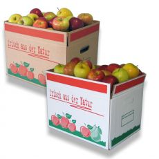 obstkarton-aus-wellpappe-2-wellig-10kg-fuellgewicht-2-1804-1